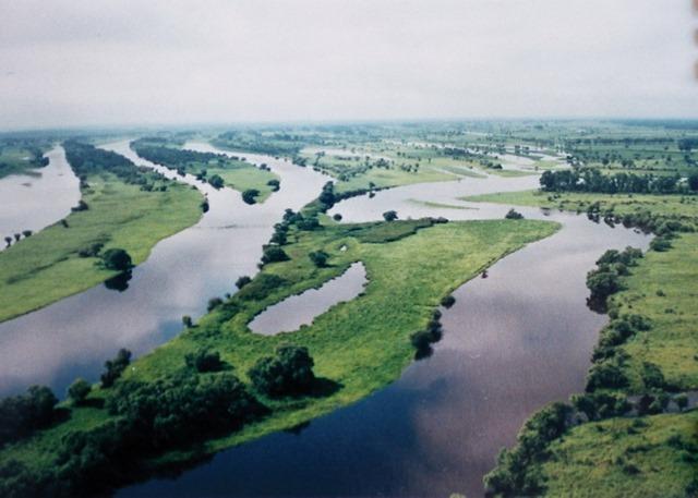 Image result for Amur river
